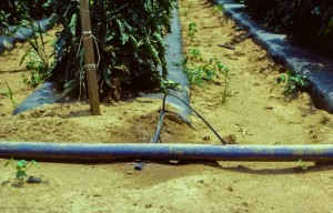 Layflat irrigation hose