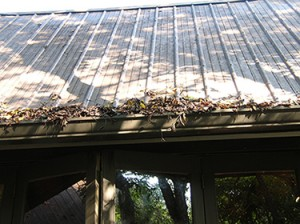 leaves and debris clogging a roof rain gutter.