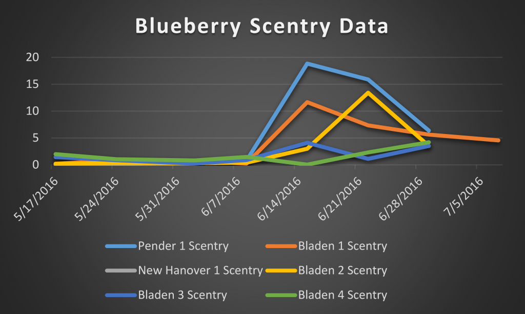 2016 blueberry scentry data