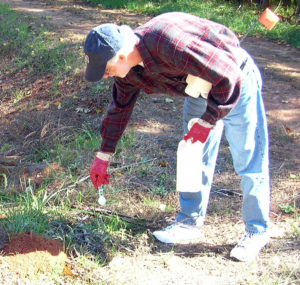 applying fire ant bait around a mound
