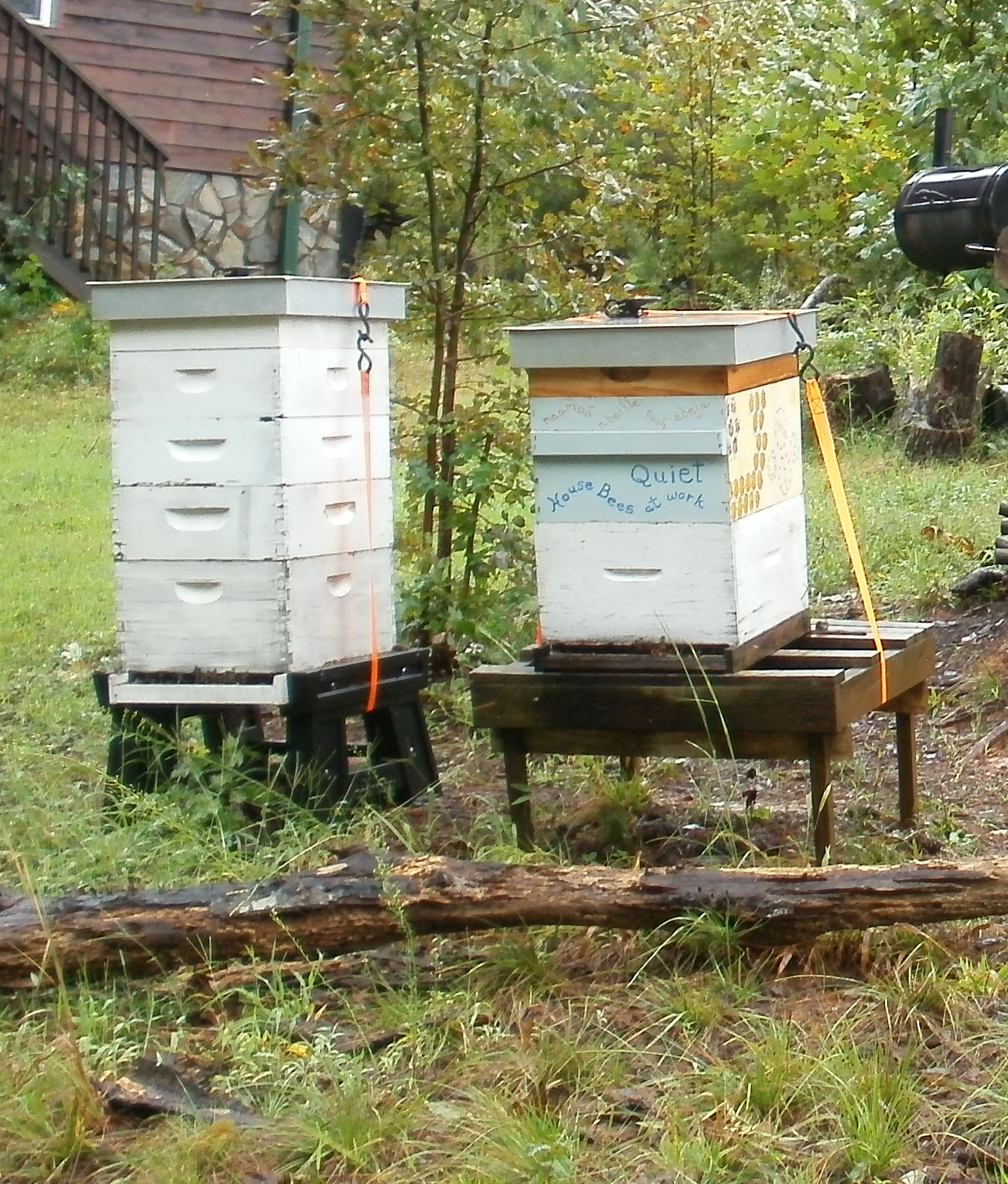 beehives secured with ratchet straps