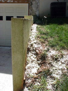 insecticidal dust on soil surface near wall