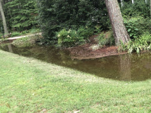 debris-clogged drainage ditch filled with stormwater